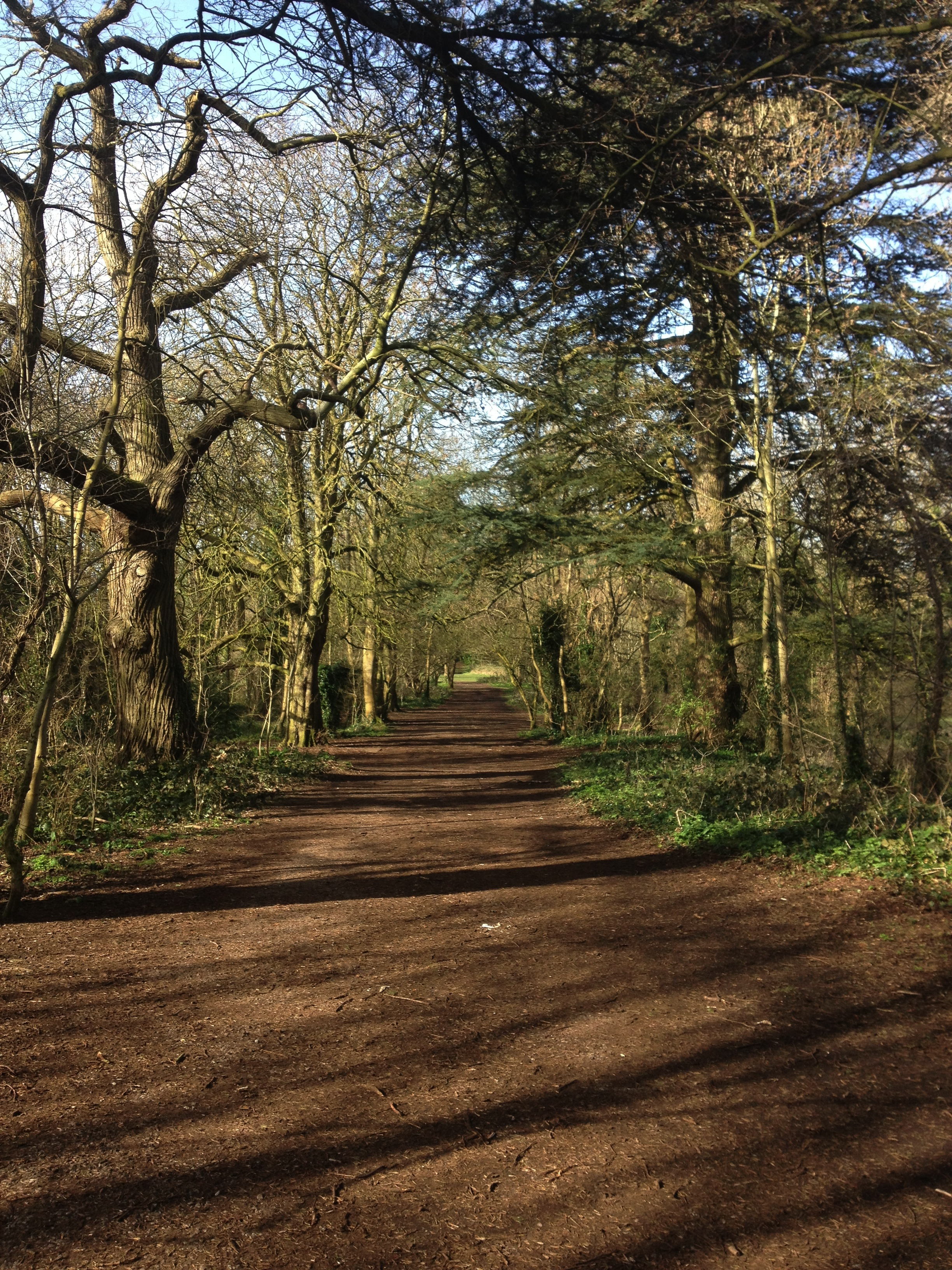 Shirehampton Park dog walking trail
